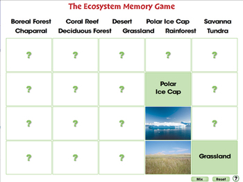 Global Warming EFFECTS: Memory Match Game - MAC Gr. 5-8
