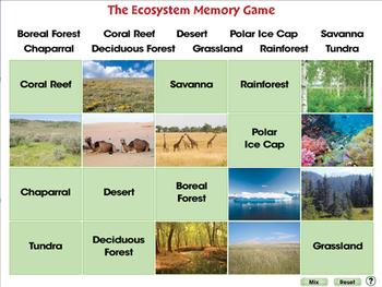 Global Warming EFFECTS: Memory Match Game - MAC Gr. 5-8