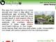 Global Warming REDUCTION: Urban Planning - PC Gr. 5-8