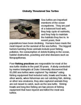 Globally Threatened Sea Turtles