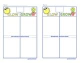 Glow and Grow Self, Teacher and Peer Reflection sheets