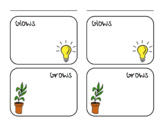 Glow and Grow Notes