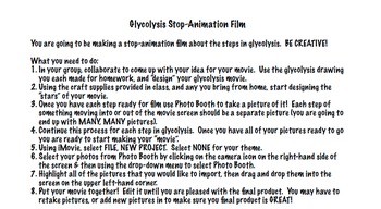 Glycolysis - Stop Animation Film