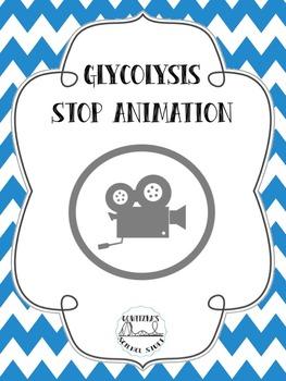 Glycolysis - Stop Animation Film