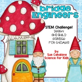 Bridge Engineers STEM Challenge {NGSS K-2-ETS1-1,2}