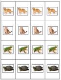 Go Fish Card Set for Pets | World Language | Mascotas