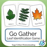 Go Gather Leaf Identification Game