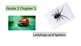 "Go Math 2nd grade Chapter 1 exemplar practice "" Lady-bugs and Spiders"""