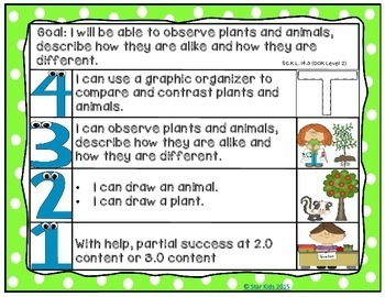Goals and Scales for Kindergarten {Science, Kid Friendly, Picture Scales}
