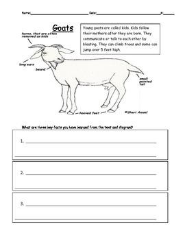 Goat Diagram
