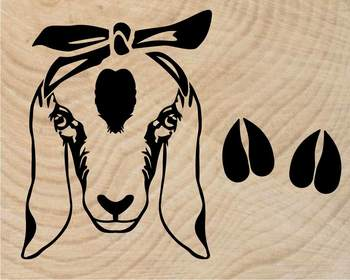 Goat Head whit Bandana Silhouette outline SVG clipart feet goats Farm Milk 792S