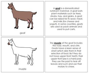 Goat Nomenclature Book
