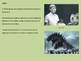 Godzilla - Powerpoint History, facts, information, picture