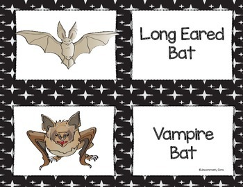 Going Batty - Integrated ELA/Science unit