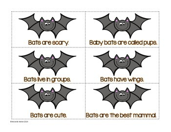 Fact and Opinion: Bats