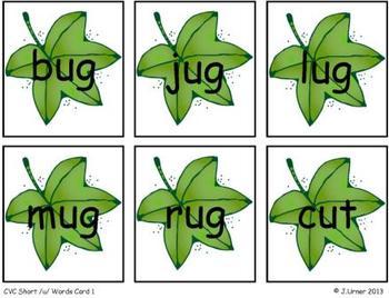 Going Buggy Bang! CVC Version