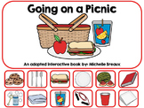 Going On A Picnic In Spring Adapted Interactive Book {Auti