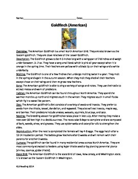 Gold Finch bird - Review Article Questions Vocabulary