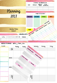 Gold Planner Template