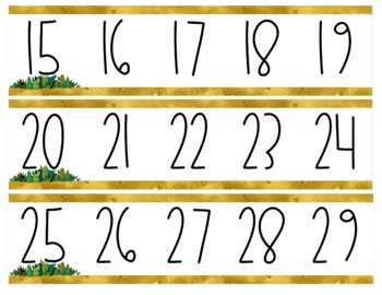 Golden Cactus Number Line