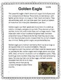 Golden Eagle Close Reading Informational Text FSA practice