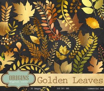 Golden Fall Leaves Autumn Clipart