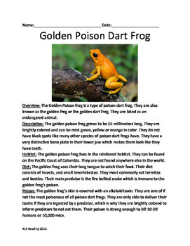 Golden Poison Dart Frog - Review Article lesson facts questions vocabulary