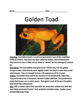Golden Toad - Extinct Lesson Review Article Questions Vocab Facts