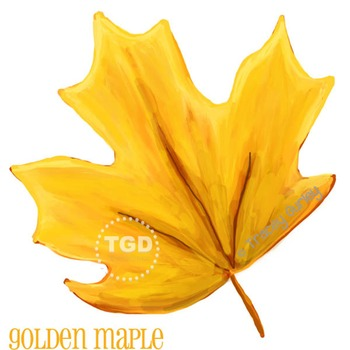 Golden Yellow Maple Leaf Printable Tracey Gurley Designs