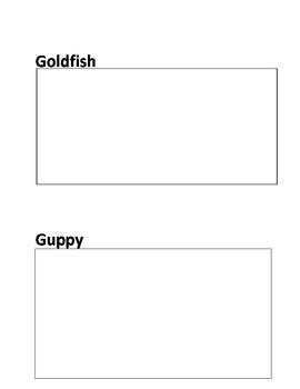 Goldfish & Guppies
