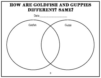 Goldfish & Guppies- Interactive Science Notebook