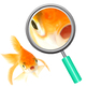 Goldfish Photos Clip Art Set for Commercial Use