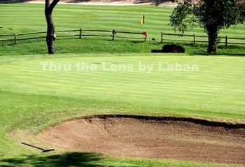 Golf Course Stock Photo #69