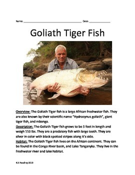 Goliath Tiger Fish - Informational Article Facts Questions Vocabulary Lesson