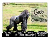 Good Morning, Gorillas Text Dependent Questions
