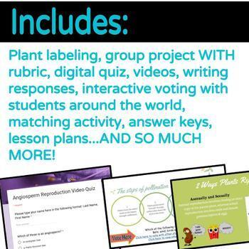 Google Classroom Interactive Slides: Plant Reproduction