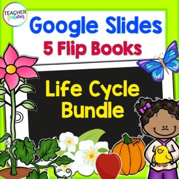 Google Classroom: Life Cycle Bundle (Apple, Pumpkin, Plant, Butterfly, Chicken)