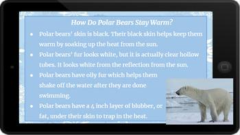 Google Classroom: Nonfiction Text and Questions- Polar Bears