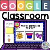 Google Classroom Plant Life Cycle