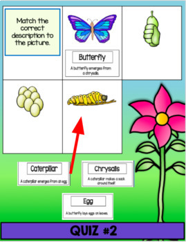 Google Classroom Science: Butterfly Life Cycle Flip Book & Activities