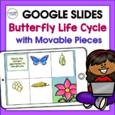 Google Classroom Activities Science BUTTERFLY LIFE CYCLE 1st & 2nd Grade