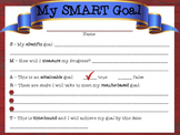 Google Digital Interactive My SMART Goal