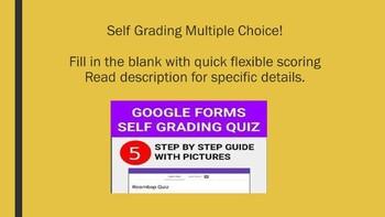 Google Form Assessment: Self Grading for Figurative Language! Digital to Go!