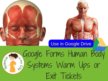 Human Body Systems & Homeostasis Google Forms Warm Up or Exit Ticket Assessments