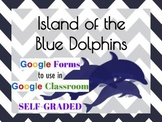 Google Classroom Island of the Blue Dolphins Comprehension
