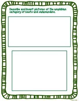 Amphibian Report Interactive Notebook Google Drive Activities