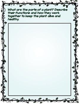 Plants Report Interactive Notebook Google Drive Activities
