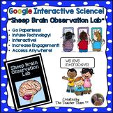 Google Drive Biology- Sheep Brain Observation Lab for Google Classroom