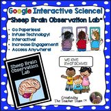 Sheep Brain Lab | Google Classroom Activities