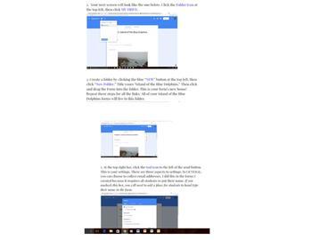 Google Quiz {FREEBIE}